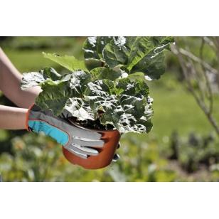 GARDENA Rukavice na sadenie a starostlivosť o rastliny, veľkosť 8 / M